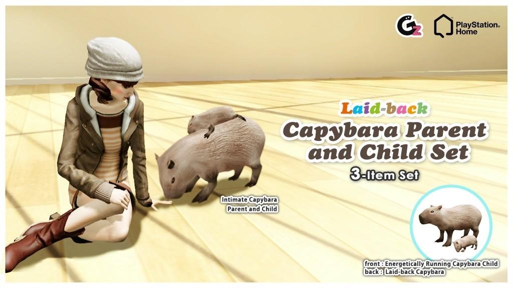 20130109_NA_ Asia_capybara_blog.jpg