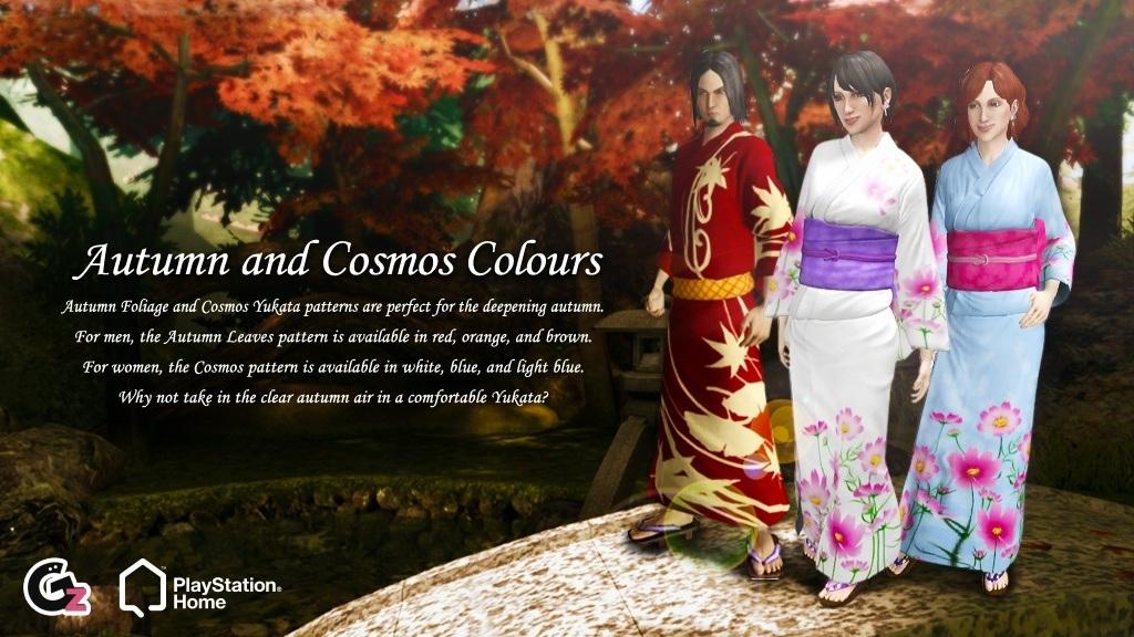 20130109_NA_EU_Asia_Autumn&Cosmos_blog.jpg