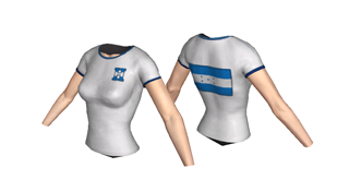 Week Two of The Soccer Supporter Collection from JAM Games! - June 4th, 2014, kwoman32, Jun 2, 2014, 7:34 PM, YourPSHome.net, png, Honduras_F_320x176.png